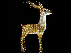 christmas light deer